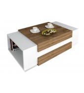 COFFEE TABLE N0 02-16